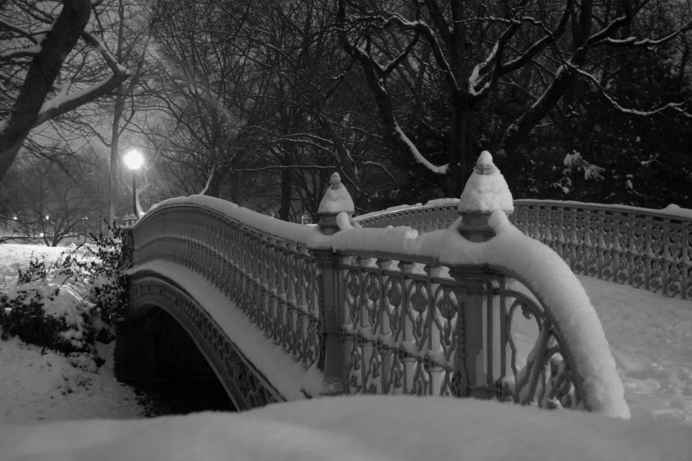 Central Park on a winter's night.